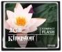 Flash-карта KINGSTON Compact Flash 2GB