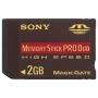 Sony MSX-M2GN